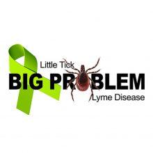 lyme-disease-400-1024x1024