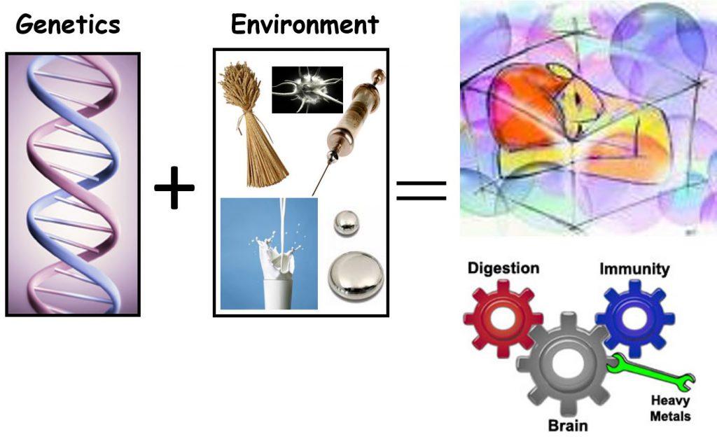 caratteristiche eccezionali Nuovi Prodotti alta qualità Autism - R.E.D. Laboratories